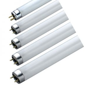 Halophosphate Fluorescent Tube 716102-0