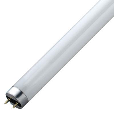 Halophosphate Fluorescent Tube 716102-529