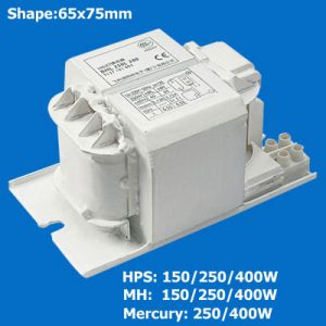 Standard HID Ballast for HPS/MH/HPM Lamps