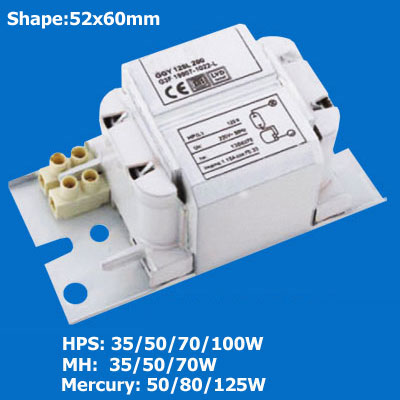Hid Ballast For Hps Mh Hpm Lamps 866303 Lighting China